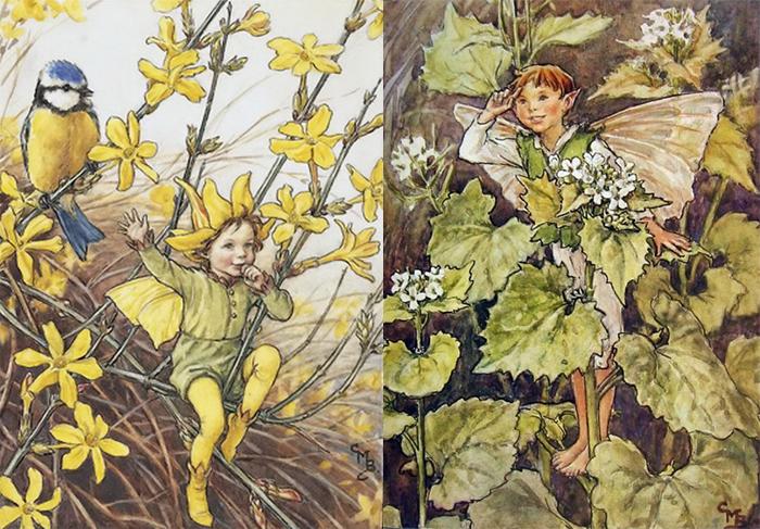 Рисунки и иллюстрации Баркер пользовались большой популярностью.