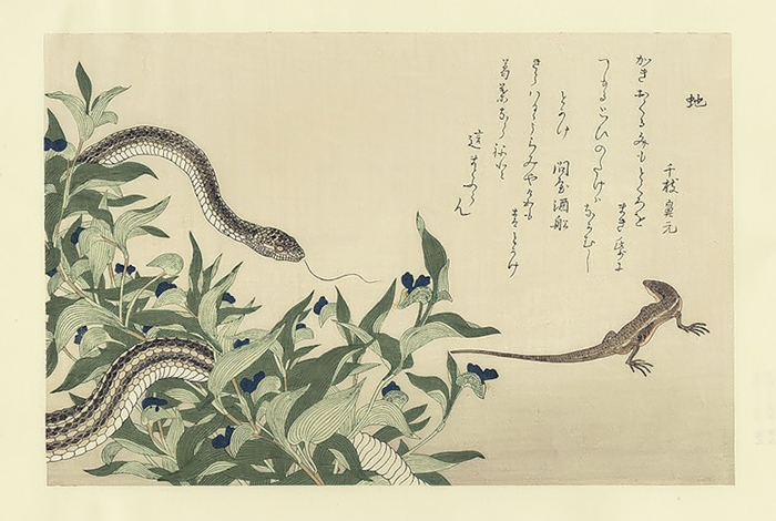 Утамаро был реалистом в изображении животного мира.