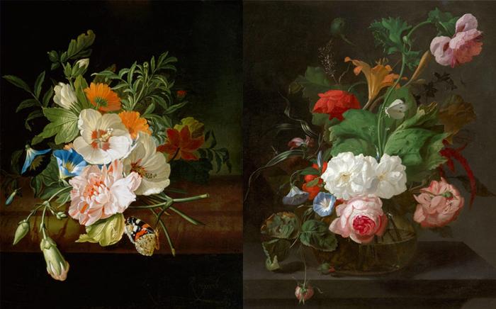 Рюйш включала в натюрморты образы бабочек и других живых существ, что отражало идею мимолетности красоты.