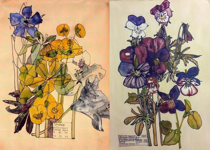 Цветочные акварели Макинтоша.
