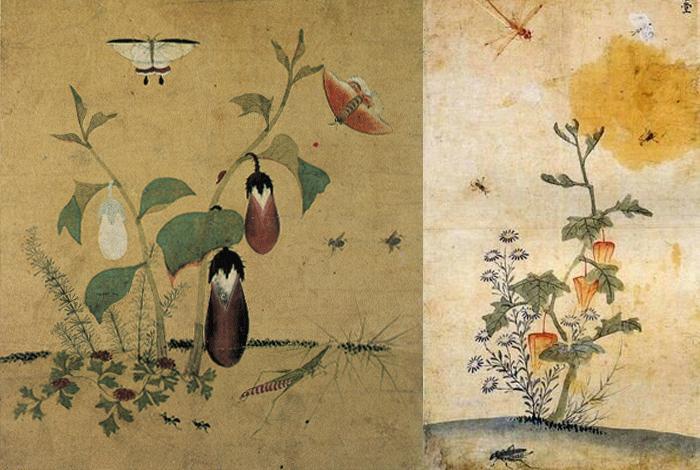 Рисунки с огородными растениями.