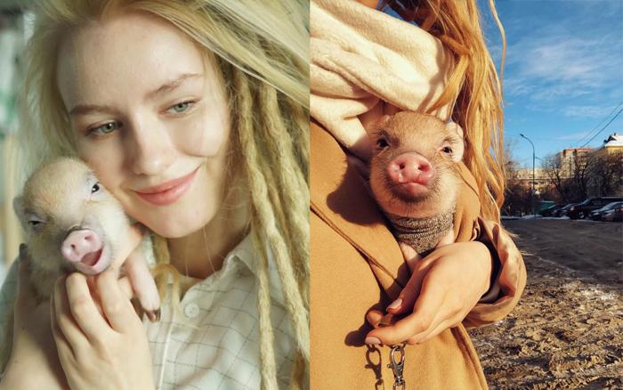 Фотографии из аккаунта свинки Джузеппы.