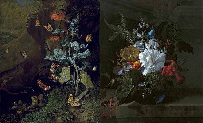 Рашель писала и необычные растения - например, кактусы (справа).