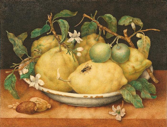 Натюрморт с блюдом цитрусов.