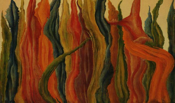 Сюрреализм Кохун иногда близок абстракционизму.