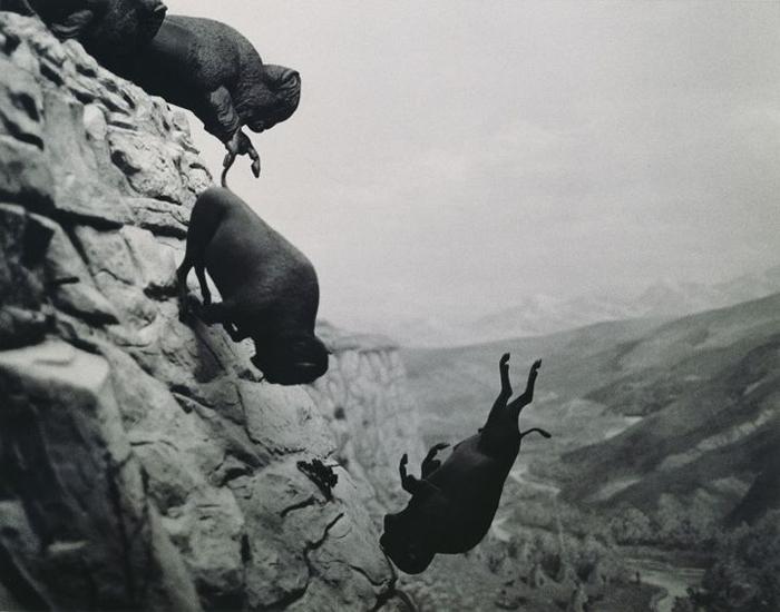 Падающие бизоны - символ упадка цивилизации.