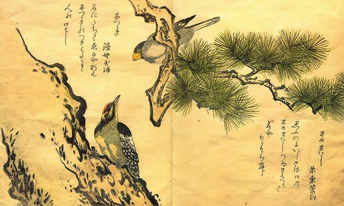 Утамаро изображал не только девушек, но и мир природы.