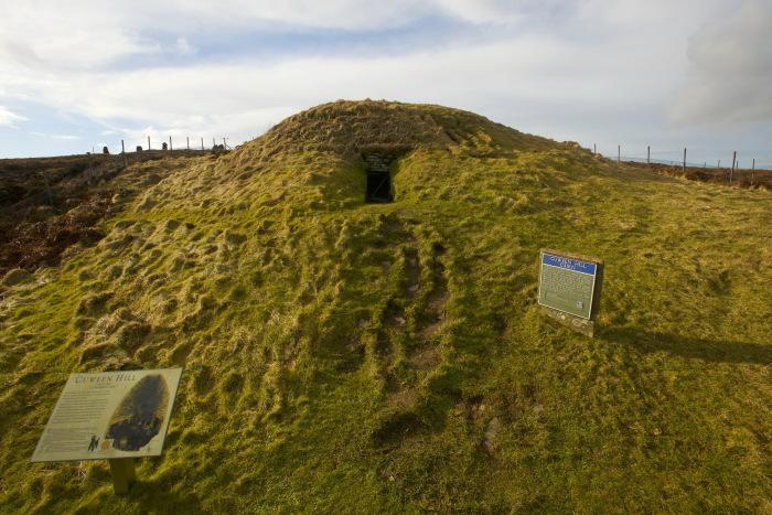 Место, где были обнаружены 24 собачьих черепа.