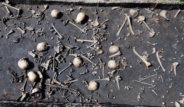 Останки жертв кровопролитного сражение. /Фото: S.Sаuer