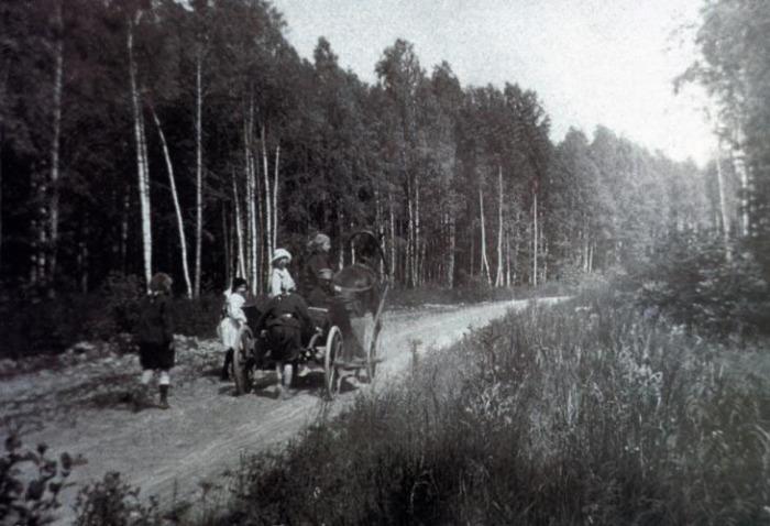 Даже не верится, что это дорога от метро Алтуфьево в сторону станции Лианозово. В 1914 году она выглядела именно так. /Фото: pastvu.com