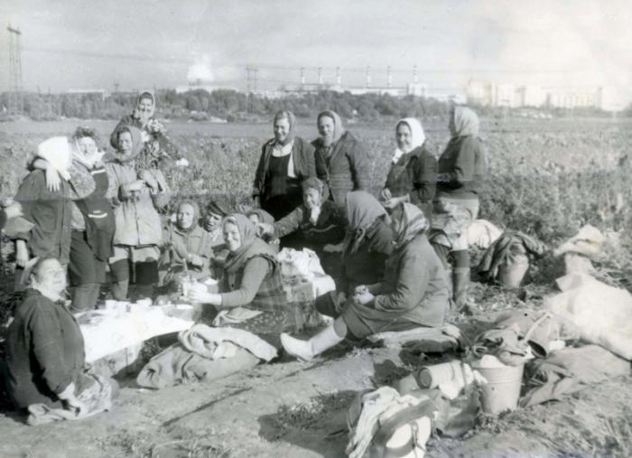Братеево в советские годы. /Фото:moya-moskva.livejournal.com