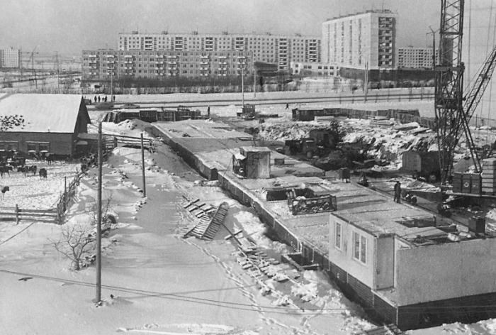 Строительство станции метро Беляево. Рядом – коровник. /Фото:pastvu.com