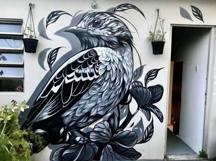 Фио рисует на стенах в разных городах.