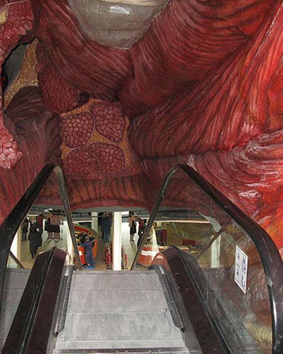 Это фактически целый город, в котором можно всего за час познакомиться с работой живых органов и систем. /Фото:blogspot.com
