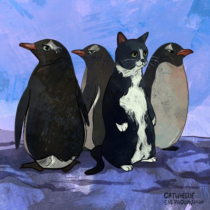 Ни один популярный котик из интернета не ускользает от внимания Эмили.