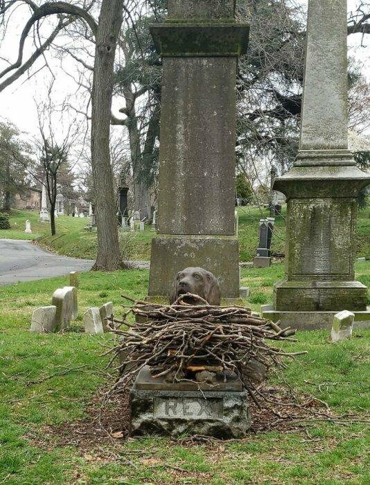Изображение Рекса можно увидеть на пересечении двух дорог кладбища. /Фото:twitter.com