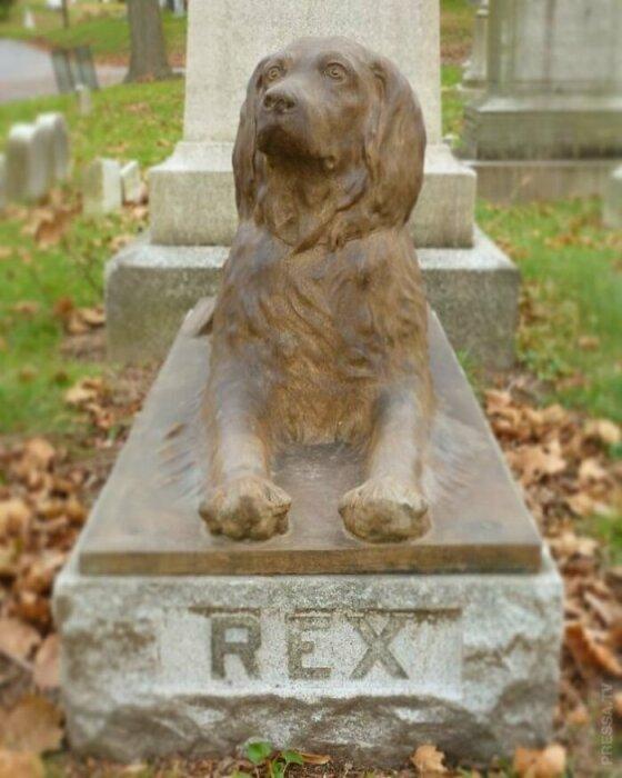 Могиле пса по имени Рекс больше сотни лет. /Фото: pressa.tv