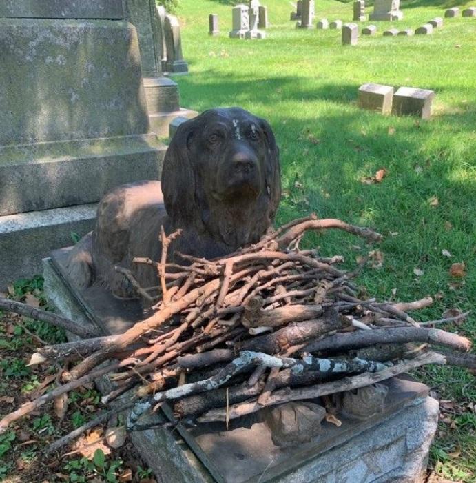 Рекс как символ всех погибших домашних питомцев./Фото:twitter.com
