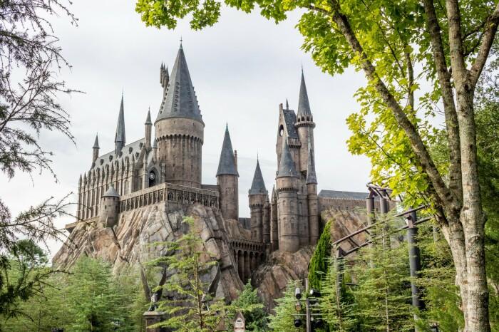Вот так выглядит Хогвардс, и это не совсем похоже на то, что представлено на проекте. /Фото:tillthemoneyrunsout.com
