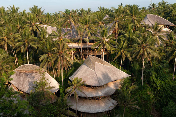 Дома из бамбука. /Фото:boredpanda.com