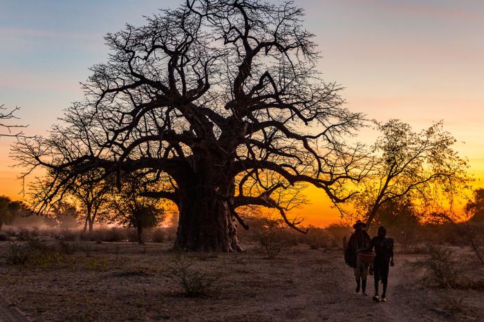 Племена, затерянные на юго-западе Анголы, пока остаются дикими, и это здорово./Фото:Tariq Zaidi / ZUMA Press
