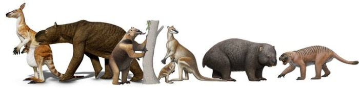 Древняя мегафауна Австралии.