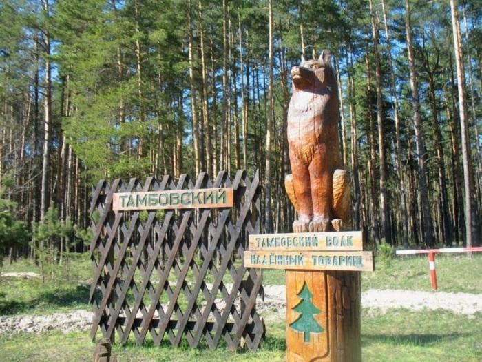 Добрый тамбовский волк. /Фото:Tourister.ru