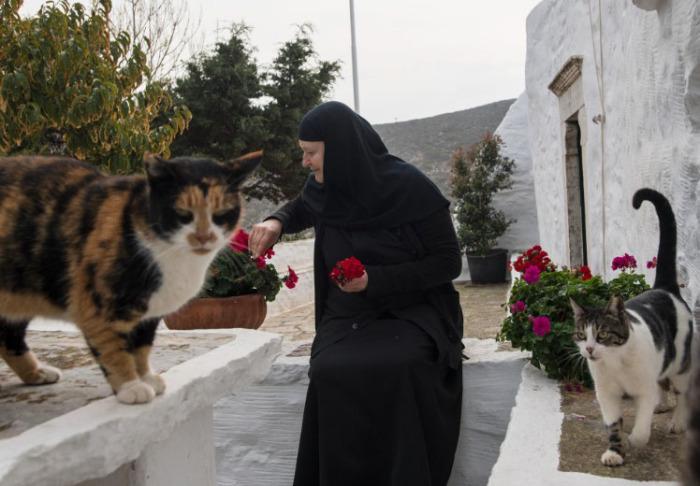 Она опекает местных животных и бережно заботится о монастырском садике. /Фото: Chiara Goia, nationalgeographic.com