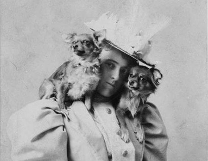 Эдит любила носить собак на плечах. /Фото:onedio.ru