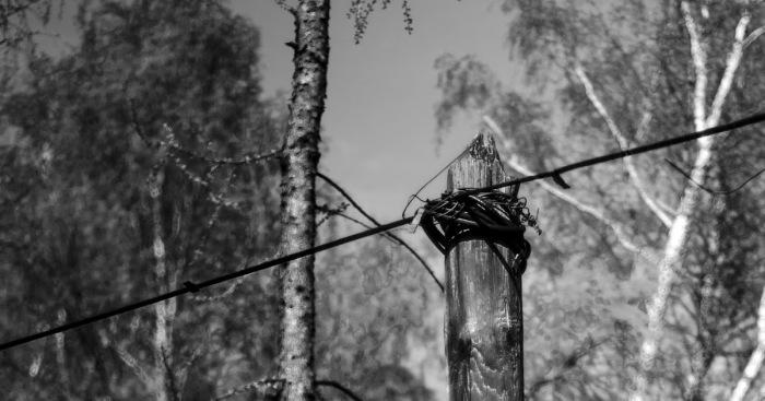 Те, кто якобы видел черный столб, утверждают, что он никогда не стоит на одном месте. /Фото:squaresense.ru
