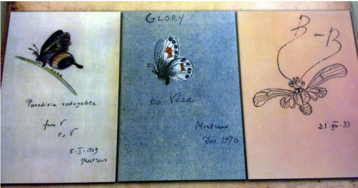 Рисунки бабочек, которые Набоков адресовал своей жене. /Фото:turbina.ru