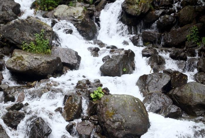 В сказках есть молочные реки, в в Абхазии - молочный водопад./Фото:go-abxazia.ru