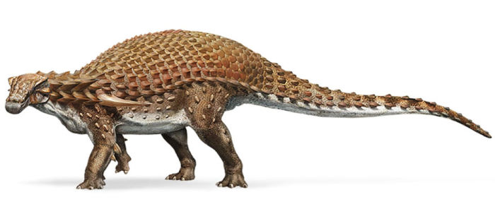 Примерно так выглядел нодозавр. /Фото:nationalgeographic.com