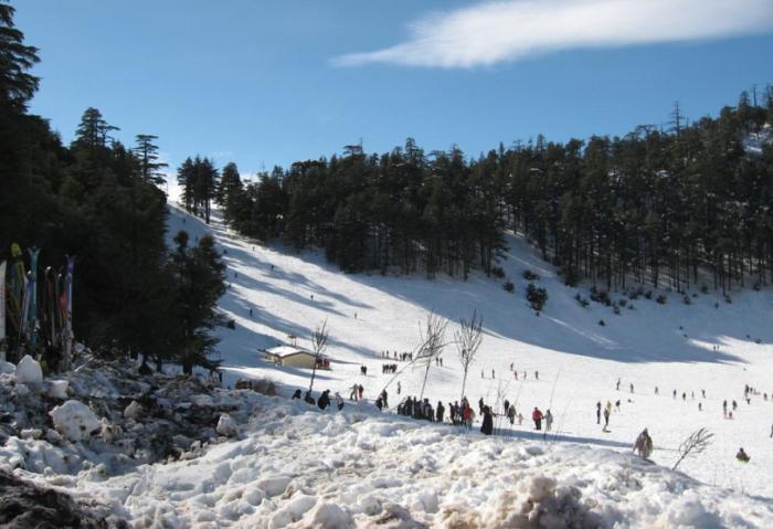 В Ифран приезжают кататься на лыжах. /Фото:descubremarruecos.com