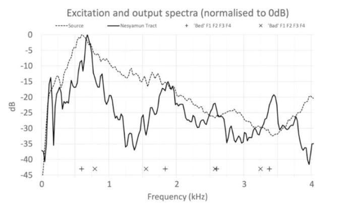 Протяжный звук, который воссоздали учёные, был тщательно изучен.