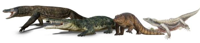 Не все животные тех времен вымерли. Некоторые виды сохранились до наших дней (например, красный крокодил)..