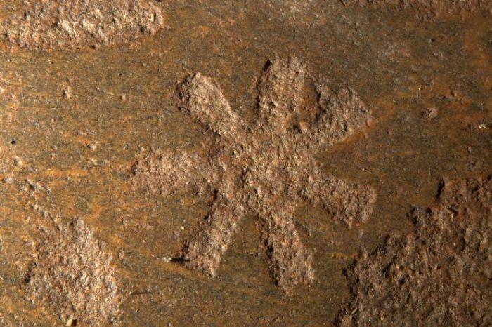 Символ Ð±ÐµÐ»Ð¾Ð¼Ð¾Ñ€ÑÐºÐ¸Ñ Ð¿Ñ€ÐµÐ´ÐºÐ¾Ð². /Фото:acropolis.org.ru