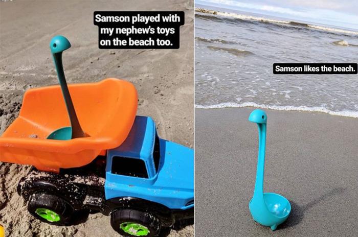 У Самсона очень насыщенная жизнь: его даже возят на пляж! /Фото:instagram.com
