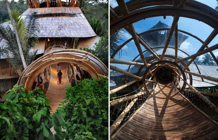Дома из бамбука строятся по определенным, не общепринятым правилам. /Фото:aznews.info