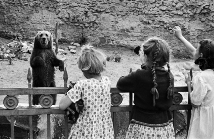Московский зоопарк. 1944 г. /Фото:/visualrian.ru