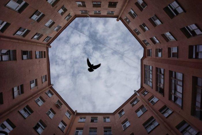 Фотографу удалось сделать необычный кадр. /Фото:slums.ru