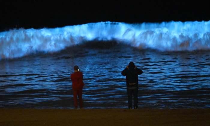 Люди на пляже фотографируют волны./Фото: theguardian.com