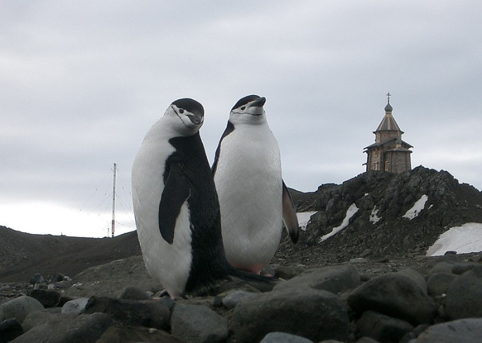 Храм в Антарктиде. /Фото:Иеромонах Гавриил (Богачихин)