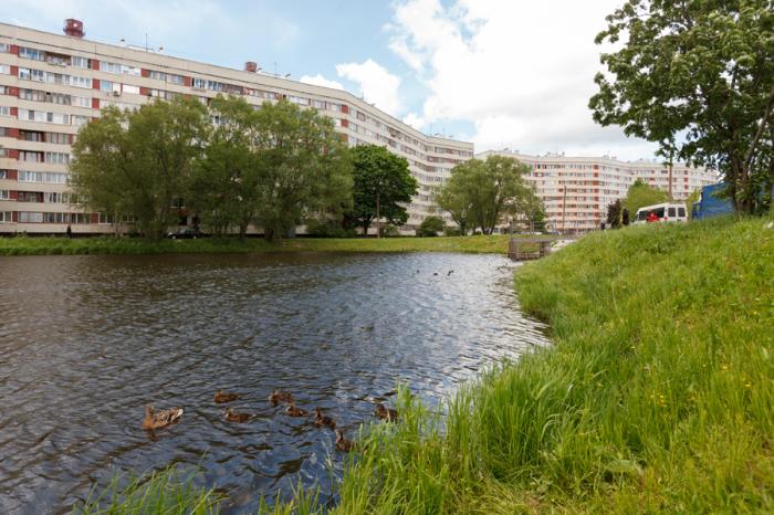 Озера расположены в районе так называемого хвоста Дома-змеи. /Фото:bn.ru