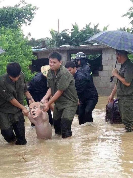 С помощью фотошопа спасенная свинья превращалась в самых неожиданных персонажей.