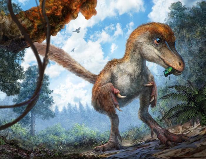 Динозавр размером с воробья. /Рисунок: Xing McKellar, Cheung Chung, nat-geo.ru
