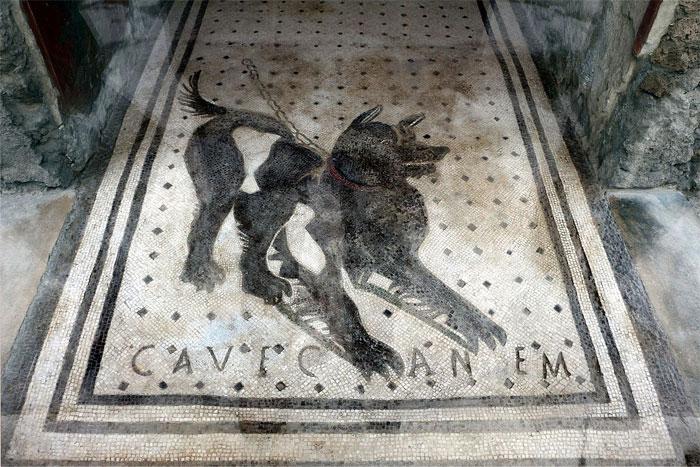 Знаменитая мозаичная картина для незваных гостей.