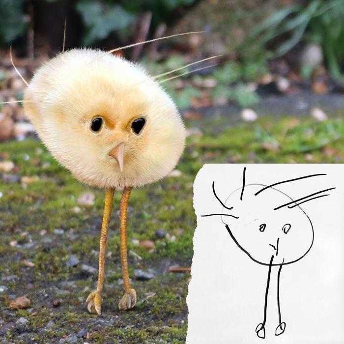 Забавный цыплёнок.