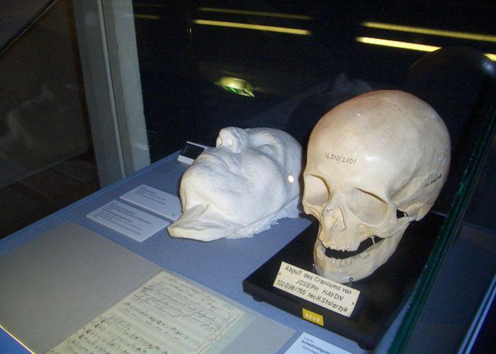 Посмертная маска и копия черепа Гайдна в венском музее. /Фото: muzcentrum.ru