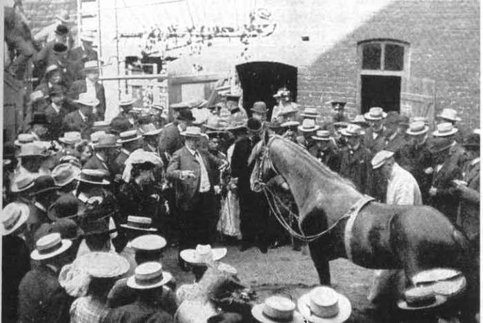 Конь восхищал и удивлял всех. /Фото:blogspot.com
